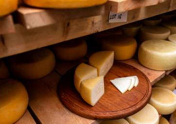 A visit to the family cheese farm and Krk sheep cheese tasting