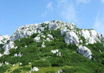 Tour of Risnjak National Park with an expert guide